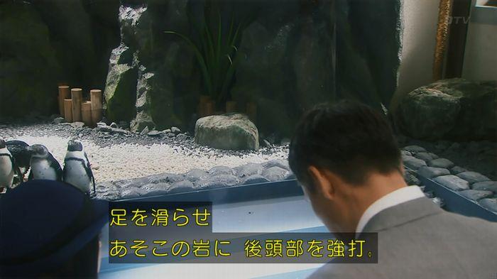 いきもの係 2話のキャプ38