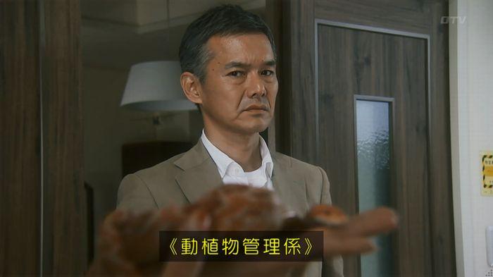 いきもの係 3話のキャプ34