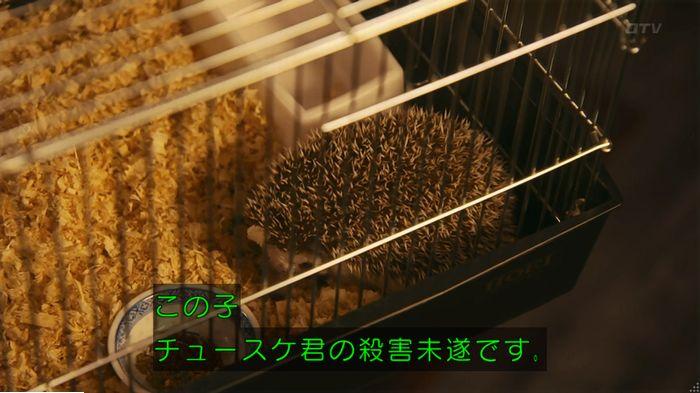 警視庁いきもの係 9話のキャプ383