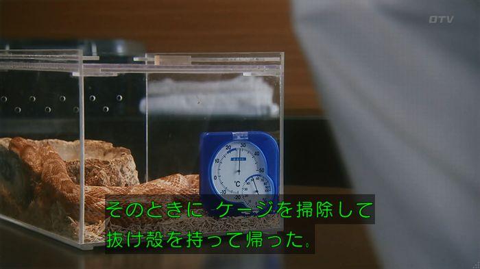 いきもの係 3話のキャプ390