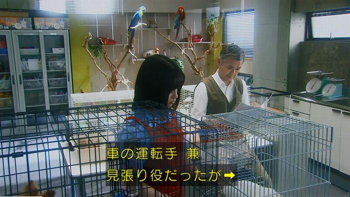 警視庁いきもの係 最終話のキャプ293