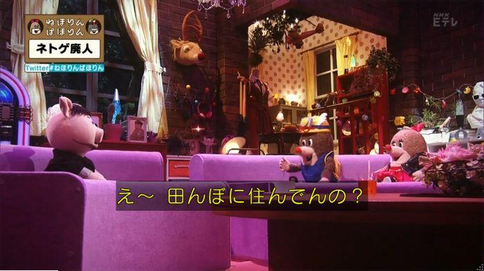 ねほりんネトゲ廃人のキャプ126