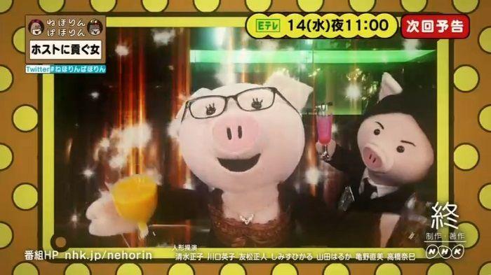 ねほりんぱほりんのキャプ510