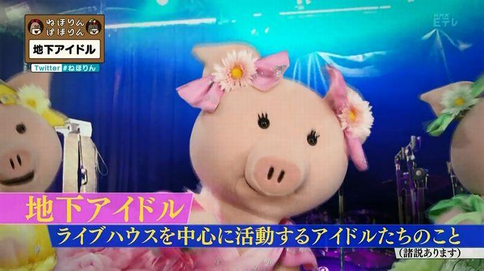 ねほりん 地下アイドル後編のキャプ2