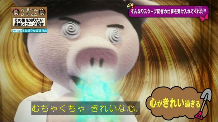 ねほりんぱほりんのキャプ420