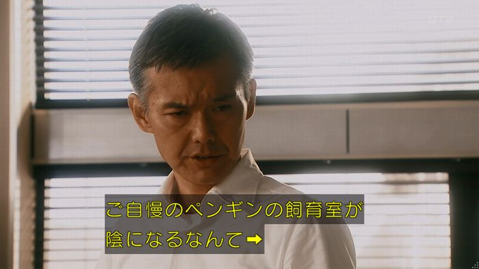 いきもの係 2話のキャプ623