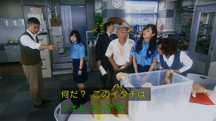 警視庁いきもの係 8話のキャプ65