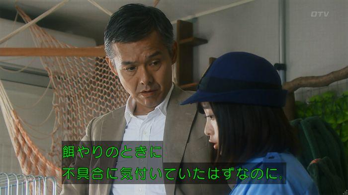 いきもの係 5話のキャプ242