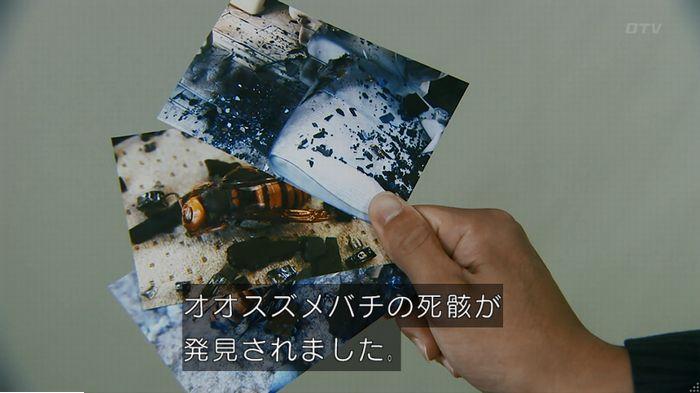警視庁いきもの係 9話のキャプ619