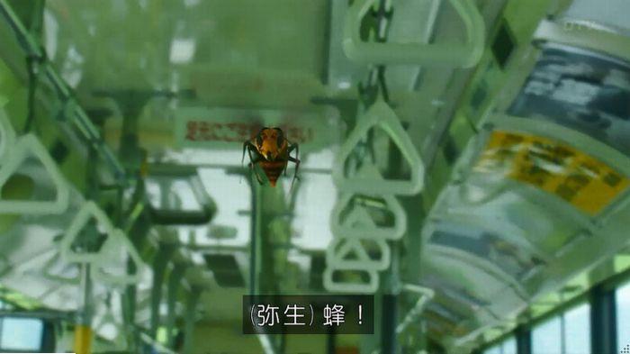 警視庁いきもの係 9話のキャプ38