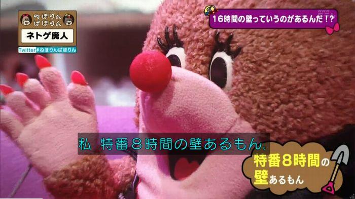 ねほりんネトゲ廃人のキャプ206