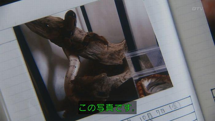 いきもの係 3話のキャプ243