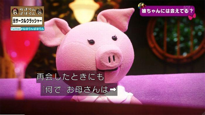 ねほりんぱほりん サークルクラッシャーのキャプ469
