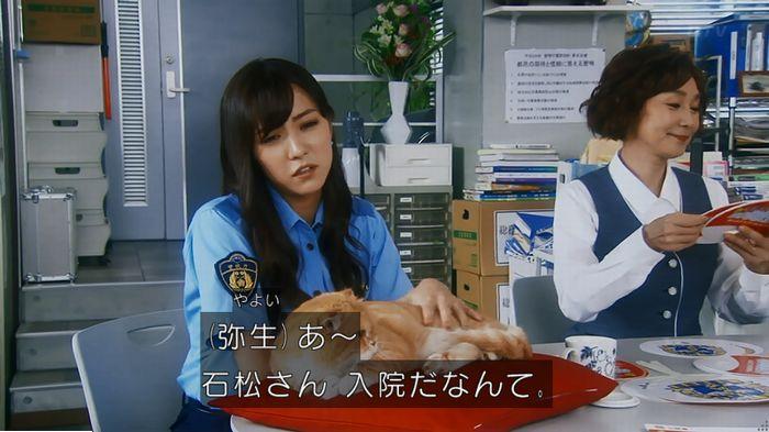警視庁いきもの係 最終話のキャプ245