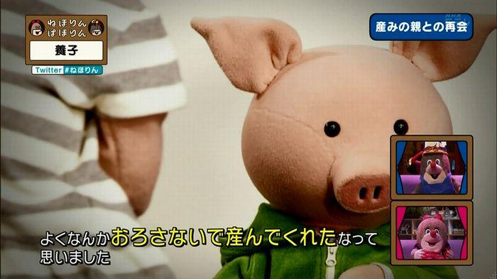ねほりん 養子回のキャプ326