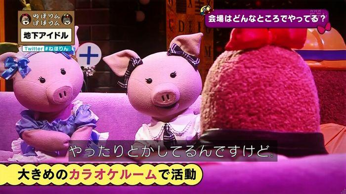 ねほりん 地下アイドル回のキャプ71