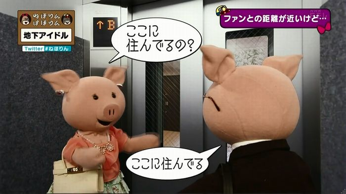 ねほりん 地下アイドル後編のキャプ131
