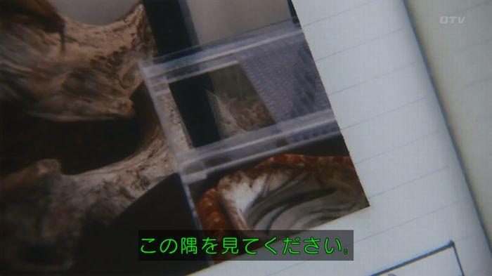 いきもの係 3話のキャプ244
