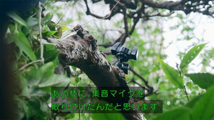 警視庁いきもの係 8話のキャプ508