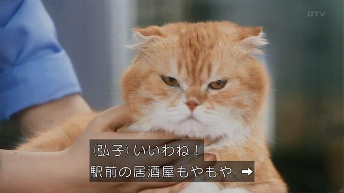 いきもの係 2話のキャプ73