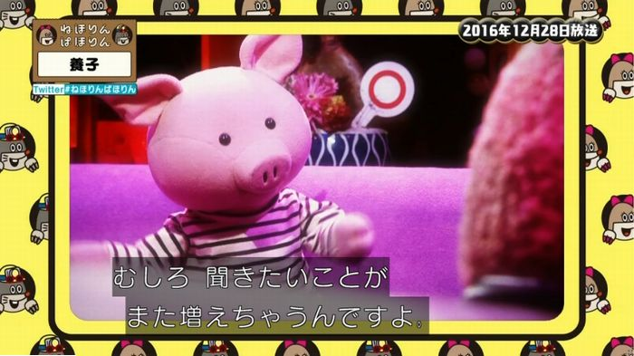 ねほりんぱほりんのキャプ498