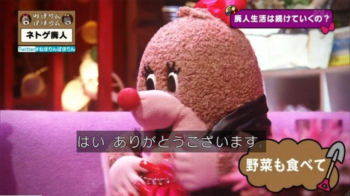 ねほりんネトゲ廃人のキャプ475