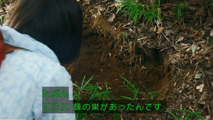 警視庁いきもの係 9話のキャプ576