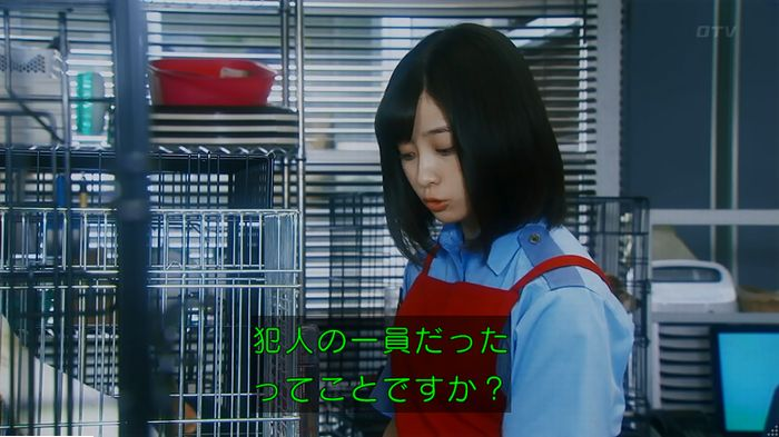 警視庁いきもの係 最終話のキャプ295
