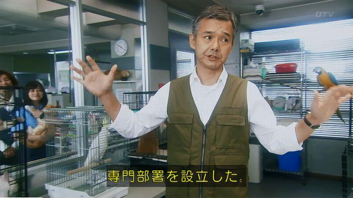 警視庁いきもの係 最終話のキャプ141