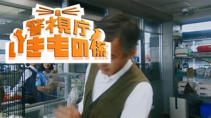 警視庁いきもの係 最終話のキャプ146