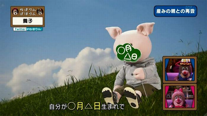 ねほりん 養子回のキャプ330