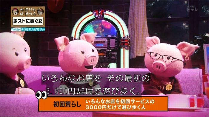 ねほりんぱほりんのキャプ500