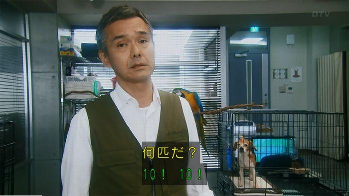 警視庁いきもの係 最終話のキャプ135