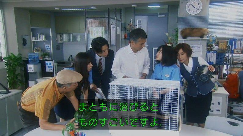 いきもの係 4話のキャプ107