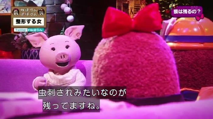 ねほりんぱほりんのキャプ73