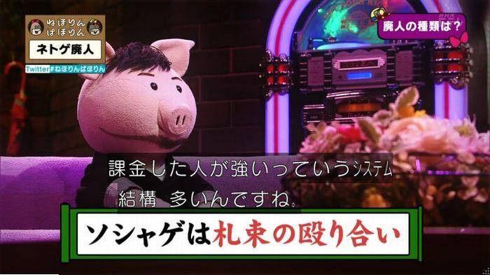 ねほりんネトゲ廃人のキャプ41