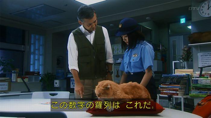 警視庁いきもの係 最終話のキャプ424
