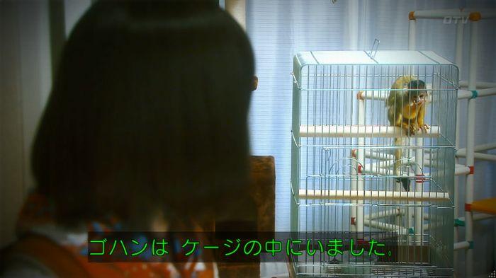 いきもの係 5話のキャプ665