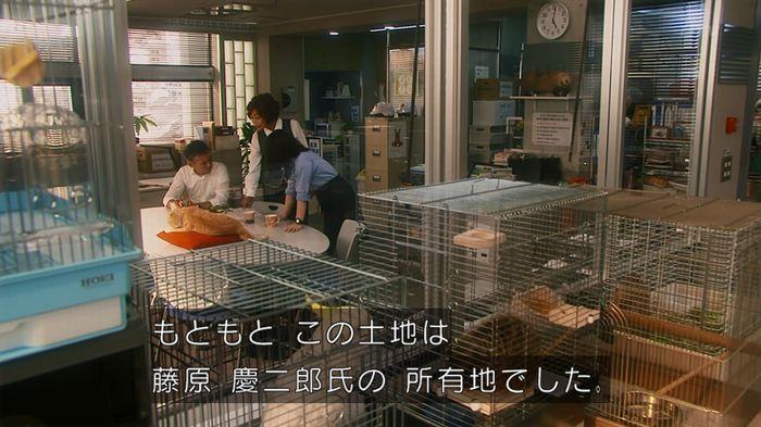 いきもの係 2話のキャプ598