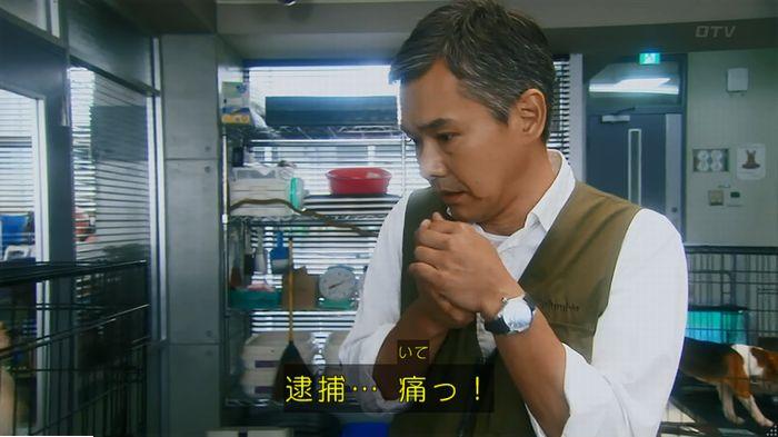 警視庁いきもの係 最終話のキャプ139