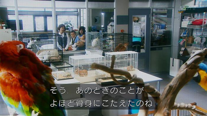 警視庁いきもの係 最終話のキャプ132