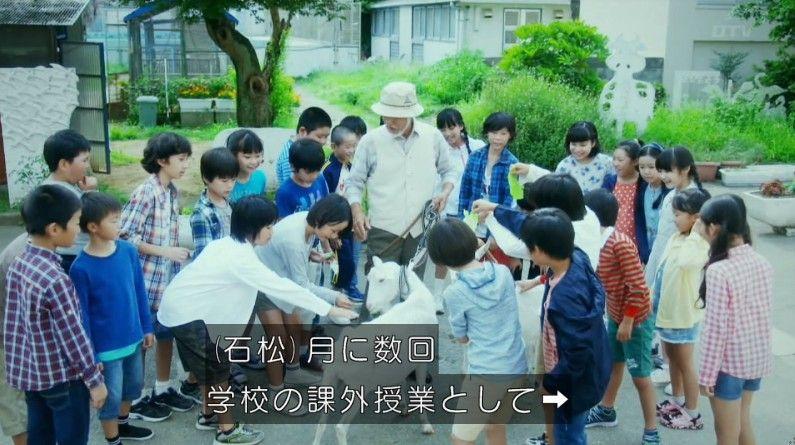 いきもの係 4話のキャプ157