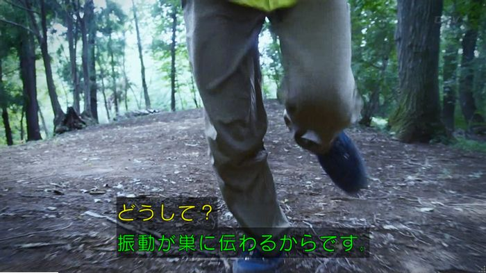 警視庁いきもの係 9話のキャプ562