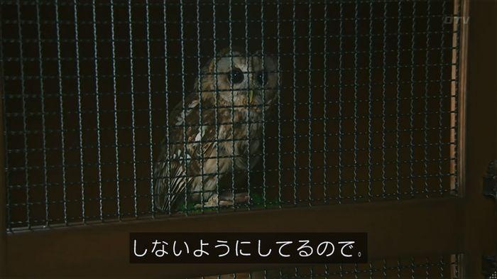 警視庁いきもの係 8話のキャプ349