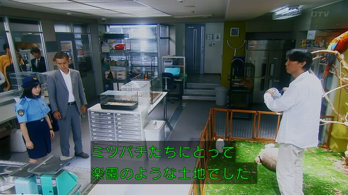 警視庁いきもの係 最終話のキャプ724
