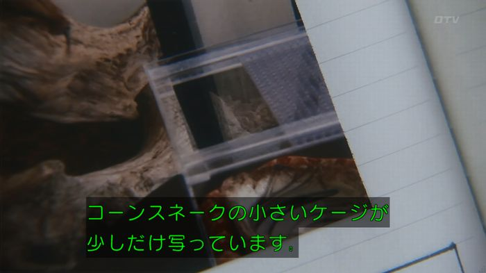 いきもの係 3話のキャプ245