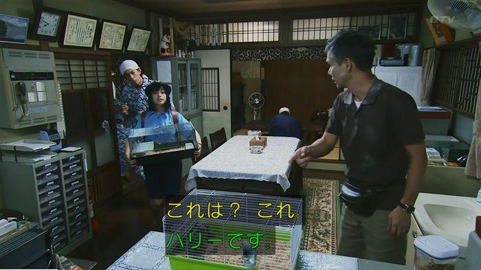警視庁いきもの係 9話のキャプ388