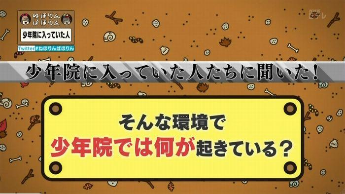 ねほりんぱほりんのキャプ138