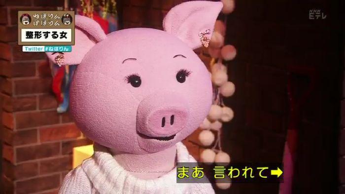 ねほりんぱほりんのキャプ37