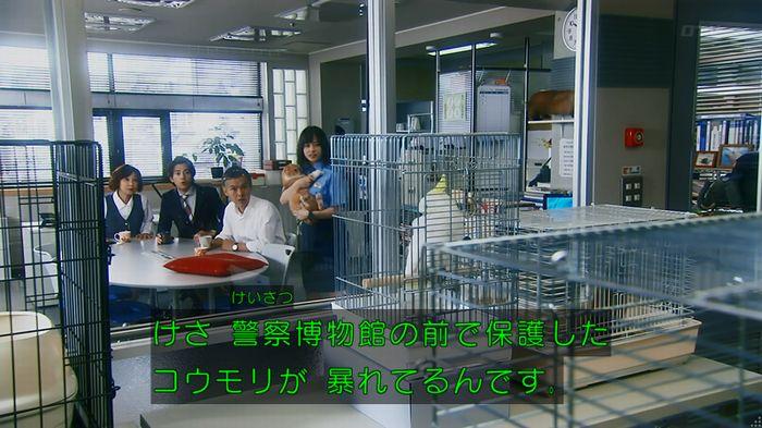警視庁いきもの係 8話のキャプ841